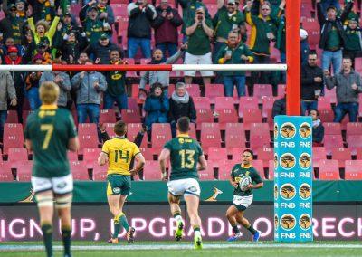ellis-park-rugby